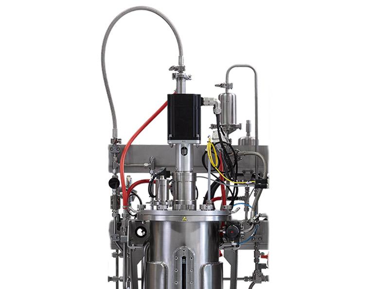 Biorreactor lid